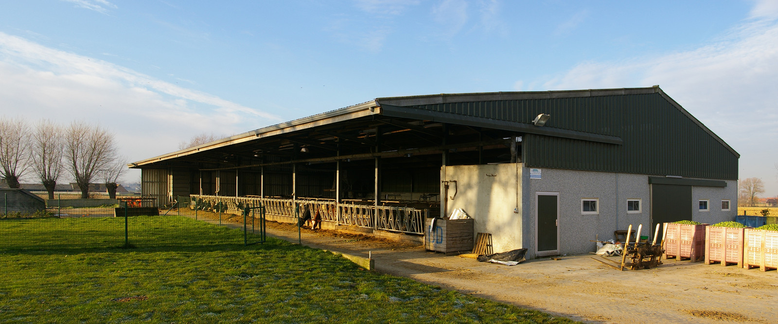 Cattle stable